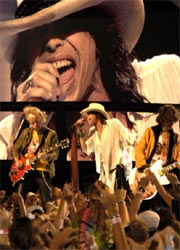 Aerosmith DMC