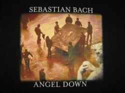 Angel Down-